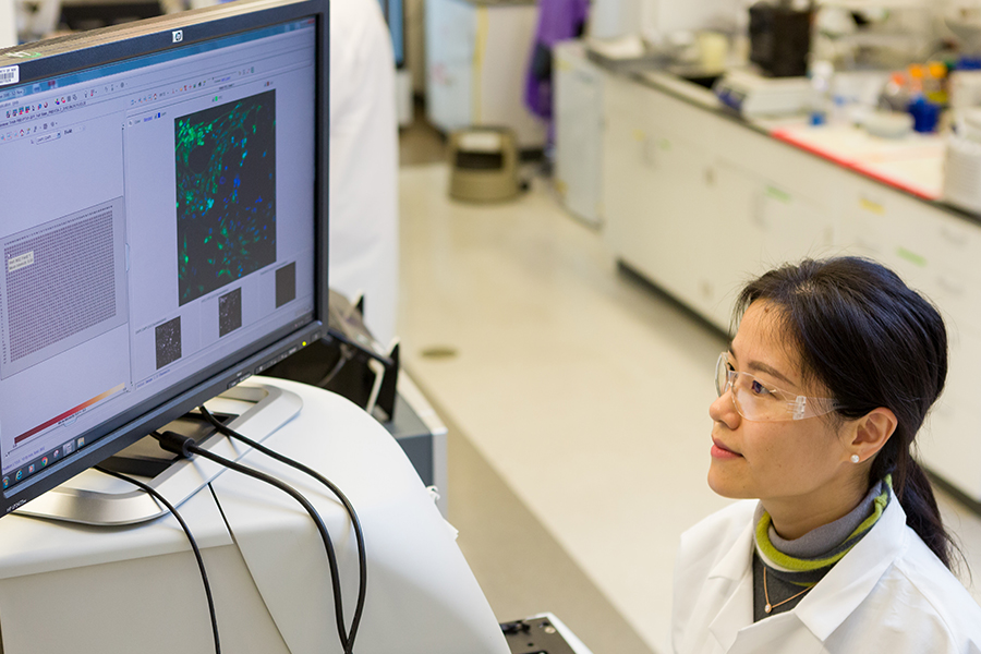 Female post-doctoral fellow examines data from high-throughput screens in one of NCATS' laboratories.