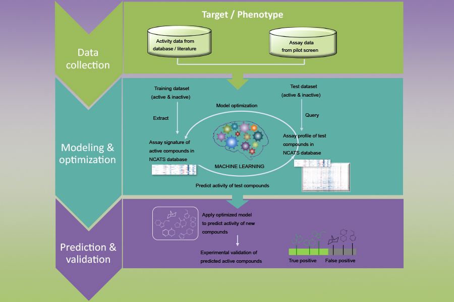 A diagram of a new biological activity-based modeling approach to improve drug development.