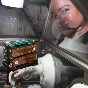 On board the International Space Station, sensors attached to chambers containing the heart tissue chips detected changes in magnetic force as the tissues' contractions moved posts with embedded magnets.