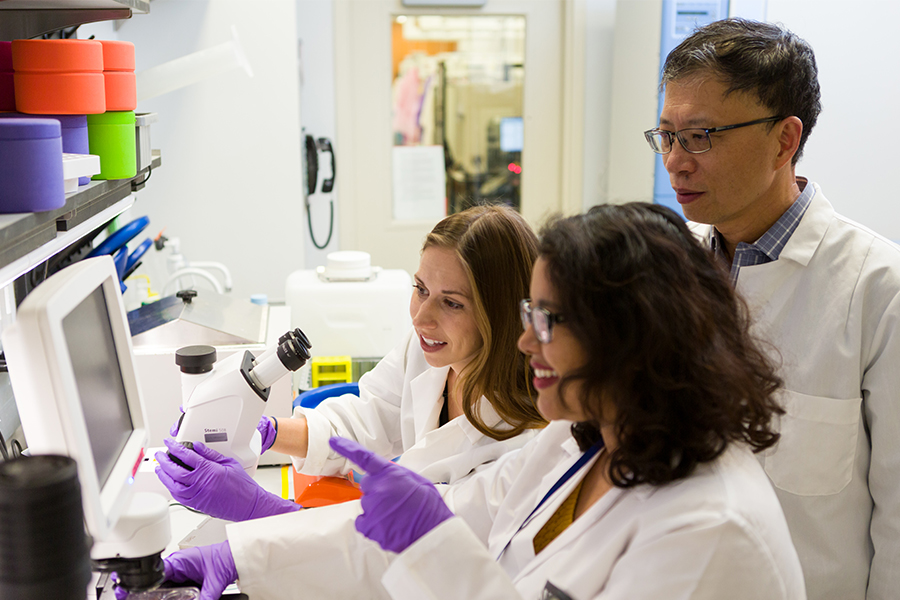 Working directly with NCATS researchers, young scientists in the Division of Preclinical Innovation's fellows program learn translational science fundamentals such as team-based collaboration and multidisciplinary research skills. Credit: Daniel Soñé Photography