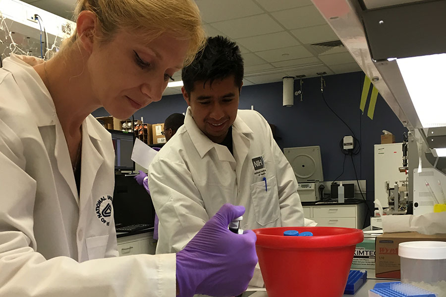Patricia K. Dranchak, Ph.D., shows a lab technique to 2018 summer intern Bryan Queme.
