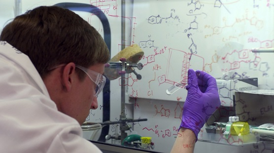 Researcher working under a chemical hood