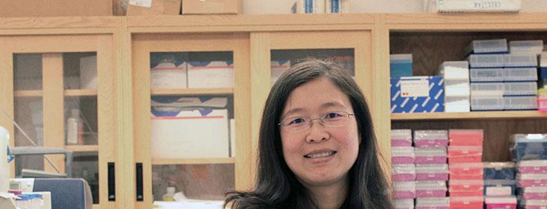 CTSA Program scholar Ying Liang, M.D., Ph.D.