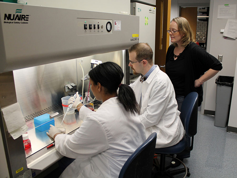 Melissa Kacena and team working in a lab