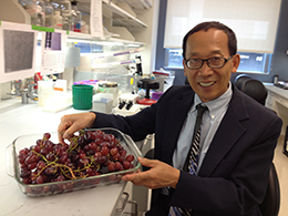 Huang-Ge Zhang in a laboratory holding a dish of red grapes.