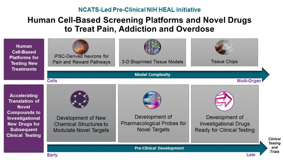 "NCATS-led Preclinical NIH HEAL Initiative. Human Cell-Based Screening Platforms and Novel Drugs to Treat Pain, Addiction, and Overdose. A diagram, presented in two rows, showing NCATS's plans to make human cell-based platforms available as models to test new treatments for pain, addiction, and overdose. The first row is labeled ""Human Cell-Based Platforms for testing new treatments"" and shows a range of model complexity from cells to multi-organ models, illustrating that these platforms will enable researchers to test and study potential drugs in human cells, tissues, and organs, before they are administered to humans in clinical trials. The first row begins with a microscopic image of neurons derived from induced pluripotent stem cells, followed by a microscopic image of 3-D bioprinted tissues, and finally followed by an image of tissue chips, which are tissues that have been developed and organized to represent functioning and connected organs. The second is labeled ""Accelerating Translation of Novel Compounds to Investigational New Drugs for Subsequent Clinical Testing"" and shows the continuum of preclinical development, from early to late, and clinical testing and trials, illustrating NCATS's efforts to partner with researchers to accelerate the development of promising compounds into new drugs to address pain, addiction, and overdose. This row begins with development of new chemical structures to modulate novel targets and alter a cell's pain and reward pathways; followed by development of pharmacological probes for novel targets, identifying promising chemical structures and developing them into pharmacological or drug-like compounds; and finally followed by development of investigational drugs ready for clinical testing that will evaluat these potential drugs for safety and effectiveness in preparation for regulatory approval and clinical trials and testing in humans."