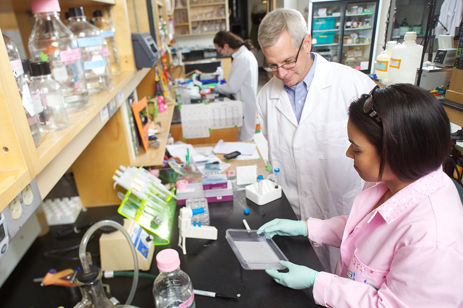 In the foreground, two researchers in lab coats review a cell plate in a laboratory setting.