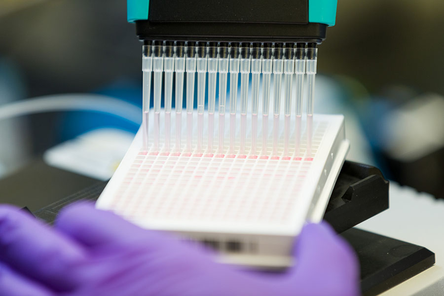An NCATS scientist prepares samples for high-throughput screening. (Daniel Soñé Photography, LLC, Photo)