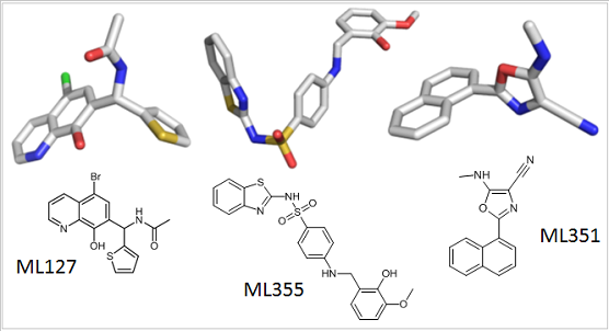 The chemical structures of small molecule probes used by scientists to understand the role of the lipoxygenase family of enzymes in health and disease.
