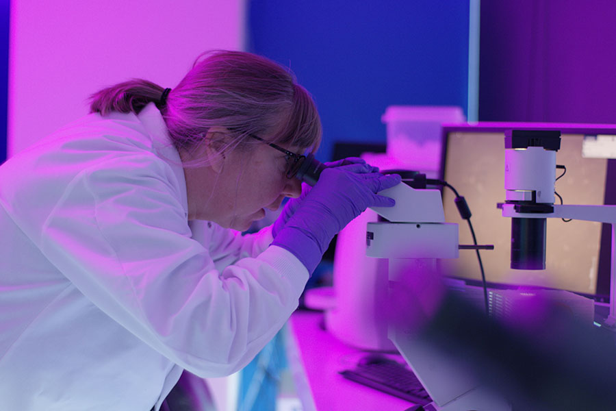 Pam Jacobson, director of Recursion's High-Throughput Screening Cell Culture Core, examines cells being prepared for the drug discovery platform.