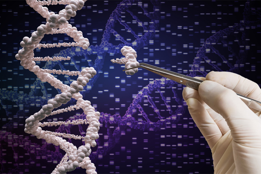 Somatic Genome editing