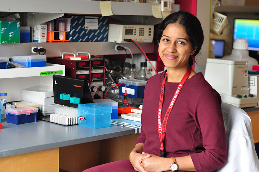 Anandi Krishnan, Ph.D., Stanford University pathology instructor, at her lab bench.
