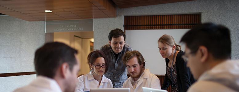 Students look at computer screens