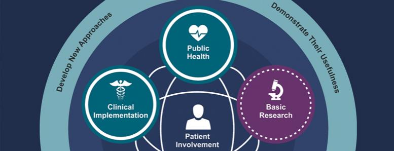 translational science spectrum graphic