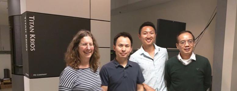 UCLA research team
