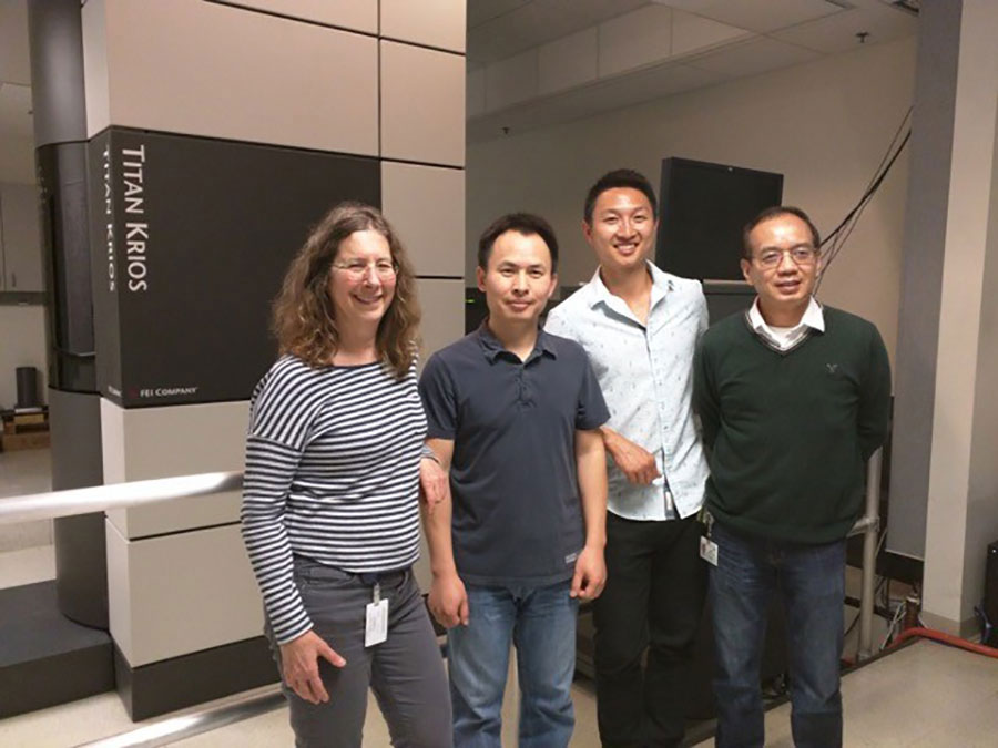 Left to right: Juli Feigon, Ph.D., Jiansen Jiang, Ph.D., Henry Chan and Hong Zhou, Ph.D., stand in front of electron microscope.