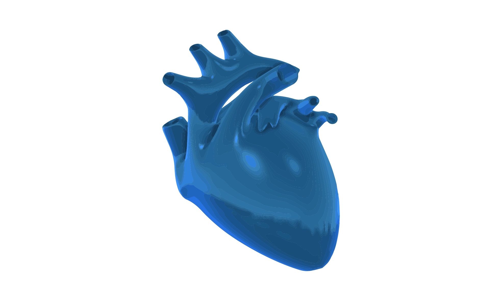 A 3d Graphic image of the heart